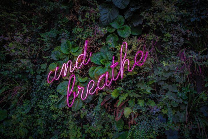 Neonlicht met de tekst 'And breathe' tegen een begroeide muur