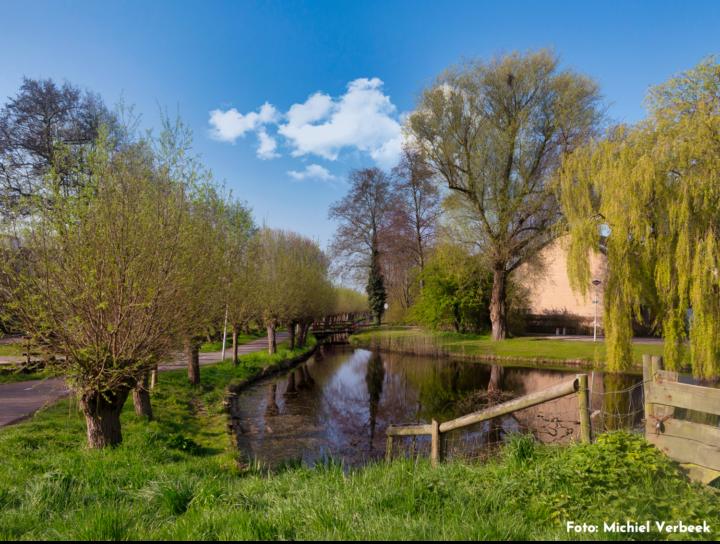 Viisi Leiden Merenwijk