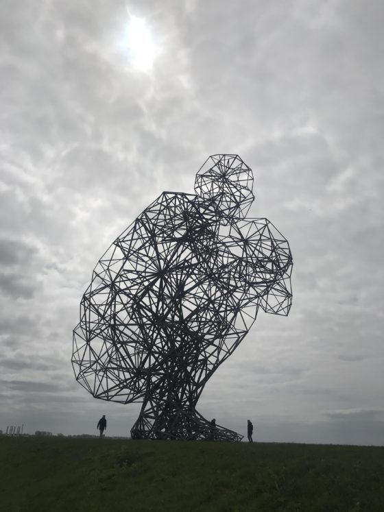 Exposure, land art in Flevoland